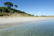 Stock Photo of karikari peninsula - new zealand