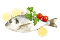 aurata fish - stock photo