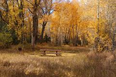 Autumn Getaway Stock Photos