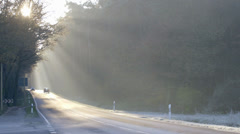 Countryroad in Misty Sunlight Stock Footage