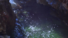 Cave with green river water and water drops Stock Footage