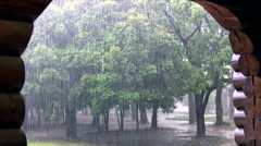 Summer downpour in Japan Stock Footage