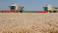 Two combine harvesters Stock Footage