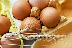 Eggs and wheat - stock photo