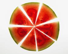 Organic watermelon slices Stock Photos