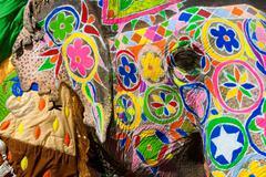 elaborately adorned elephants during holi, the hindu festival of colors, in j - stock photo