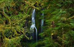 Waterfall, columbia river gorge, oregon Stock Photos