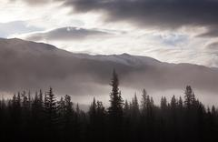 misty conditions over the landscape and forest, jasper national park, alberta - stock photo
