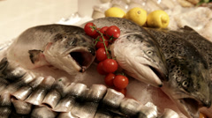 Fresh fish and fruits of the sea on fishmarket - stock footage