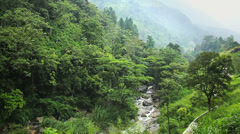 Panorama of forest, mountain river Stock Footage