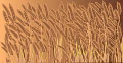 crop field - stock illustration