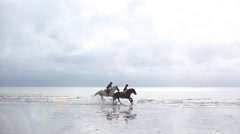 Horses gallop through water Stock Footage