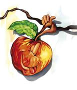 funny apple on the tree branch - stock illustration