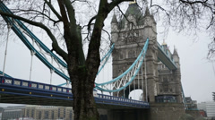 TOWER BRIDGE MEDIUM SHOT FROM BELOW AND BENEATH WITH TREE WINTER MORNING Stock Footage