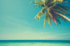 summer sea view with palm at tropic island - stock photo