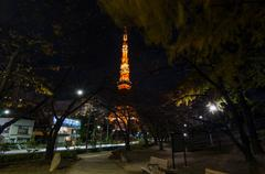 night time view of tokyo tower - stock photo