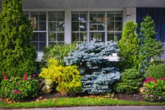 garden in front of house - stock photo