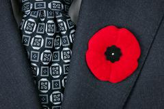 Stock Photo of remembrance day poppy on suit