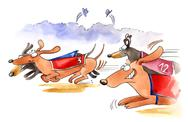 Stock Illustration of dachshund dogs race
