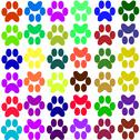 Stock Illustration of Drawing colored paw prints
