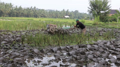 Man plowing muddy rice paddy with machine Stock Footage