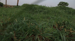 Exterior of Lawn Stock Footage