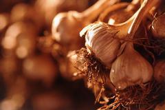Amount of garlic bulbs Stock Photos