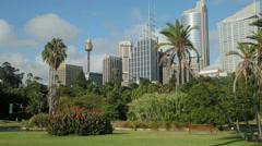 Botanical gardens, financial district, sydney skyline, australia Stock Footage