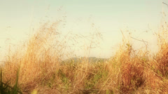 Natural Scene Stock Footage