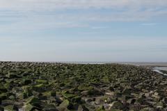 North Sea Coast - stock photo