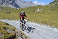 Mountain biker riding though swiss mountain area Stock Photos