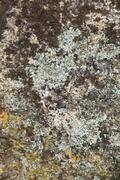 surface of the old granite stone as a backdrop. - stock photo
