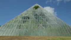 Sydney royal botanical gardens tropical glasshouse Stock Footage