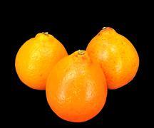 honey bell oranges - stock photo