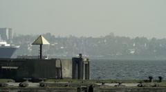 Cargo Ship Traffic in Kiel Timelapse 1 Stock Footage