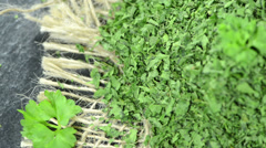 Dried parsley (not loopable) Stock Footage