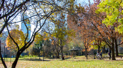 Fall colors in St. James Park - Toronto, Canada Stock Footage