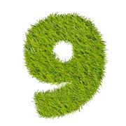 Stock Illustration of numbers from the green grass, isolated on white