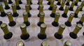 Bottles in winery Footage