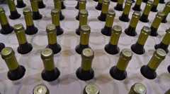 Bottles in winery Stock Footage