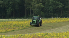 Tractor with mulching attachment clearing land from invasive Ragwort Stock Footage