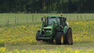 Stock Video Footage of Tractor with mulching attachment clearing land from invasive Ragwort + zoom out
