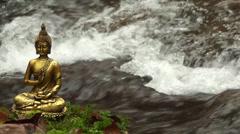 Buddha am Wasser - stock footage