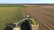 Stock Video Footage of Aerial view of a farmer harvesting silage