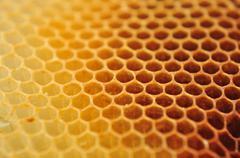 Bee wax clay Stock Photos