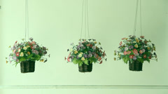 Three flower pots, Fake flowers plastic mounted in the side wall. Stock Footage