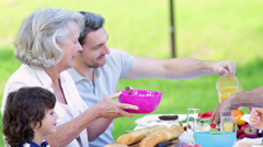 Extended family eating lunch together in the park Stock Footage