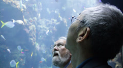 Two Asian Men Viewing Fishes in the Aquarium Stock Footage