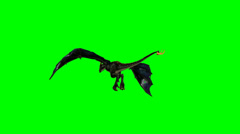 Flying dragon wyvern on green green Stock Footage