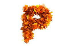 Stock Illustration of Fall  alphabet letter P